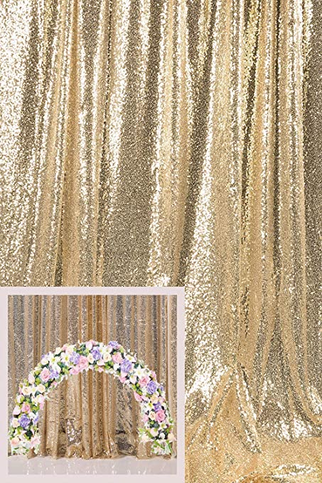 Kate Fotohintergrund Pailletten Champagner Gold Elektronik