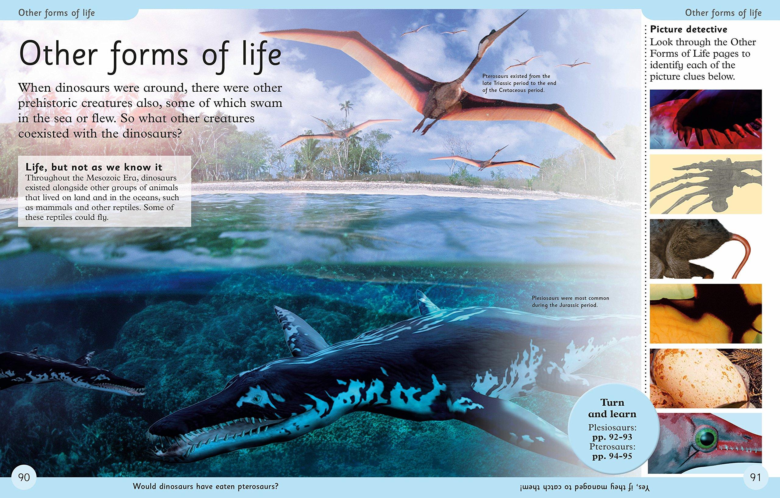 First Dinosaur Encyclopedia (DK First Reference) by DK Publishing Dorling Kindersley (Image #5)