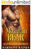 Mountain Bear (Return to Bear Creek Book 2)