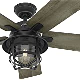 """Hunter Fan 54"""" Weathered Zinc Outdoor Ceiling Fan with a Clear Glass LED Light Kit and Remote Control, 5 Blade (Certified Refurbished)"""