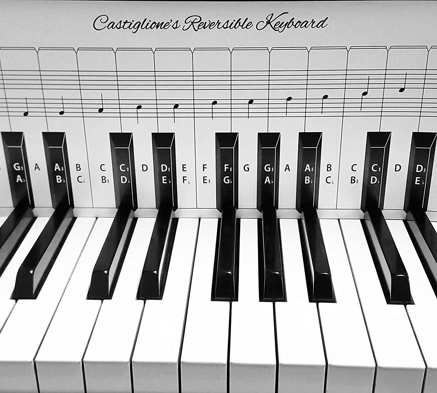 Amazon practice keyboard note chart for behind the piano amazon practice keyboard note chart for behind the piano keys musical instruments hexwebz Image collections