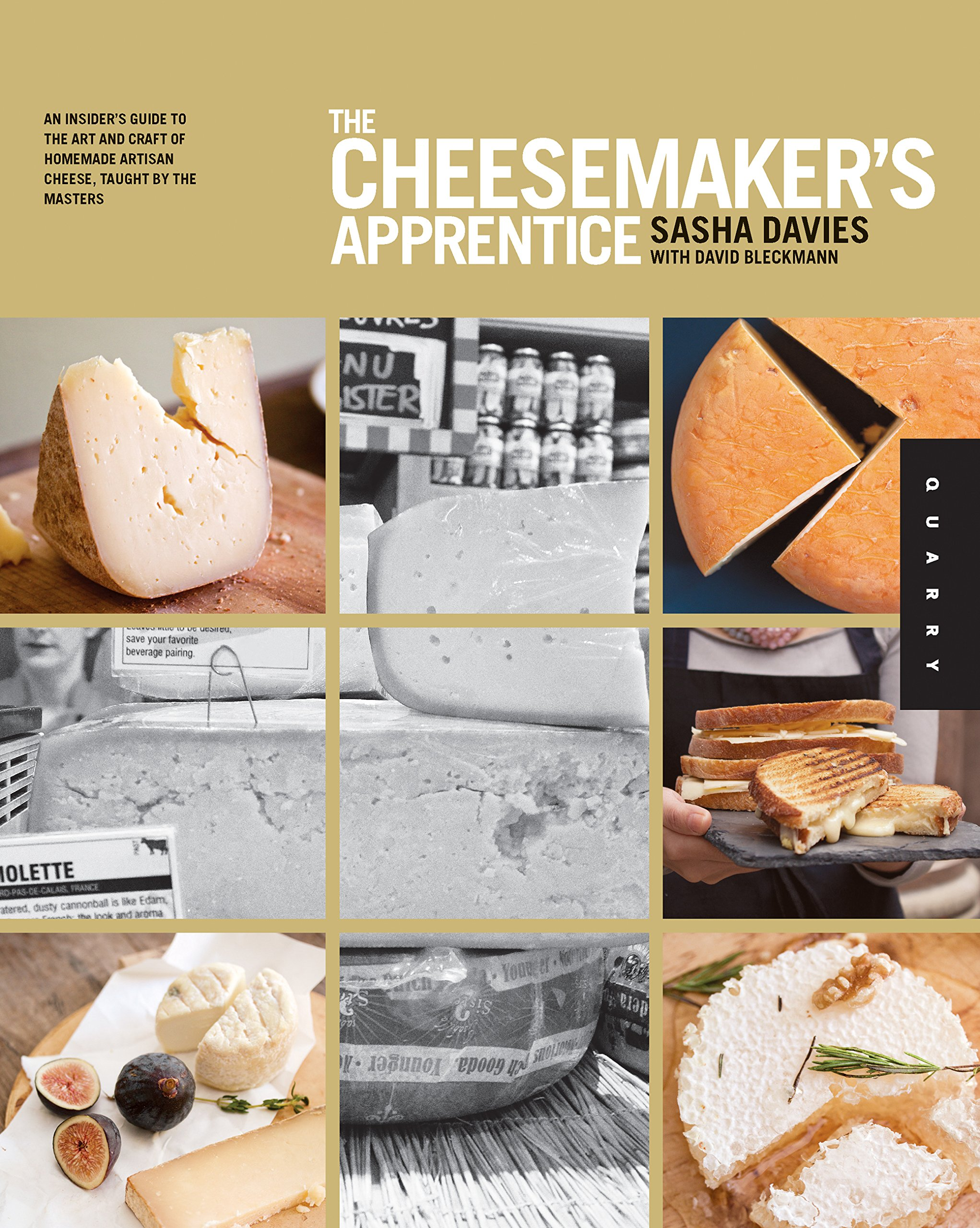 Download The Cheesemaker's Apprentice: An Insider's Guide to the Art and Craft of Homemade Artisan Cheese, Taught by the Masters pdf epub