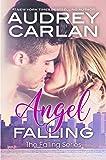 Angel Falling (The Falling Series)