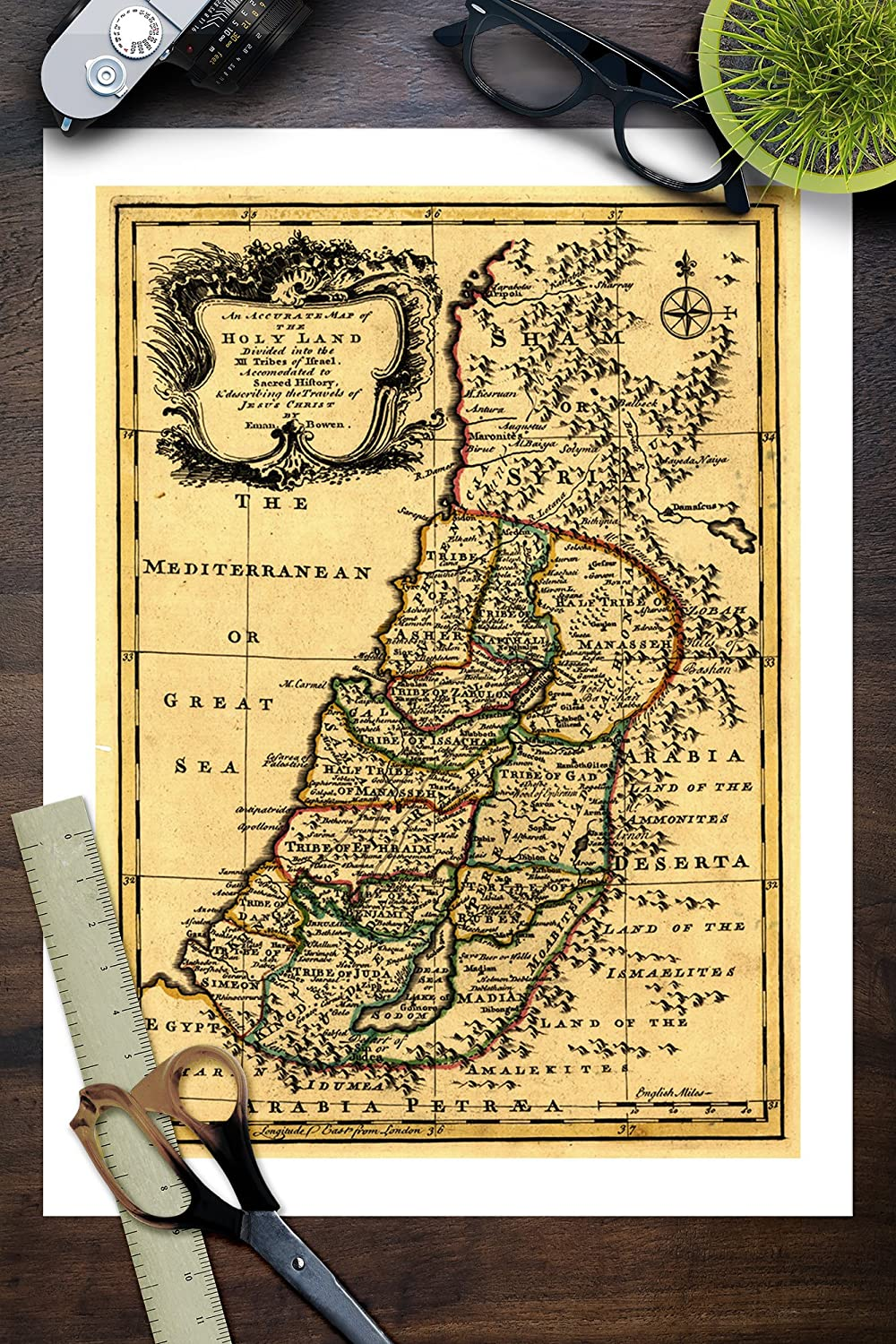 Amazon.com: The Tribes of Israel in Palestine - Panoramic Map (9x12 ...