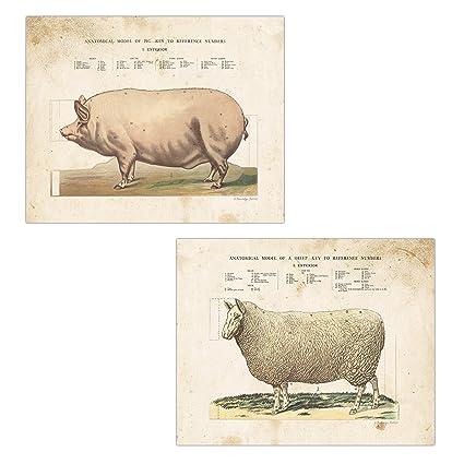 Amazon Vintage Ephemera Farm To Table Country Animals