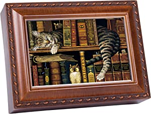 Cottage Garden Cat Sleeping in Library Wooden Music Box That's What Friends are for