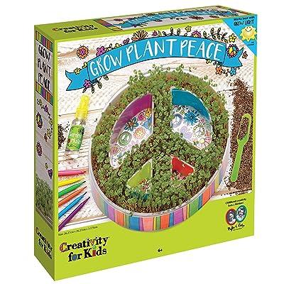 Creativity for Kids Plant A Peace Garden Kit - Peace Garden Craft Kit for Kids: Toys & Games