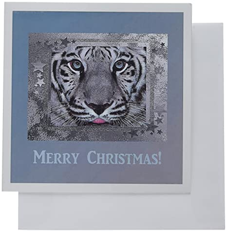 052456232c White tiger on silver blue star frame merry christmas greeting cards inches  set of office products