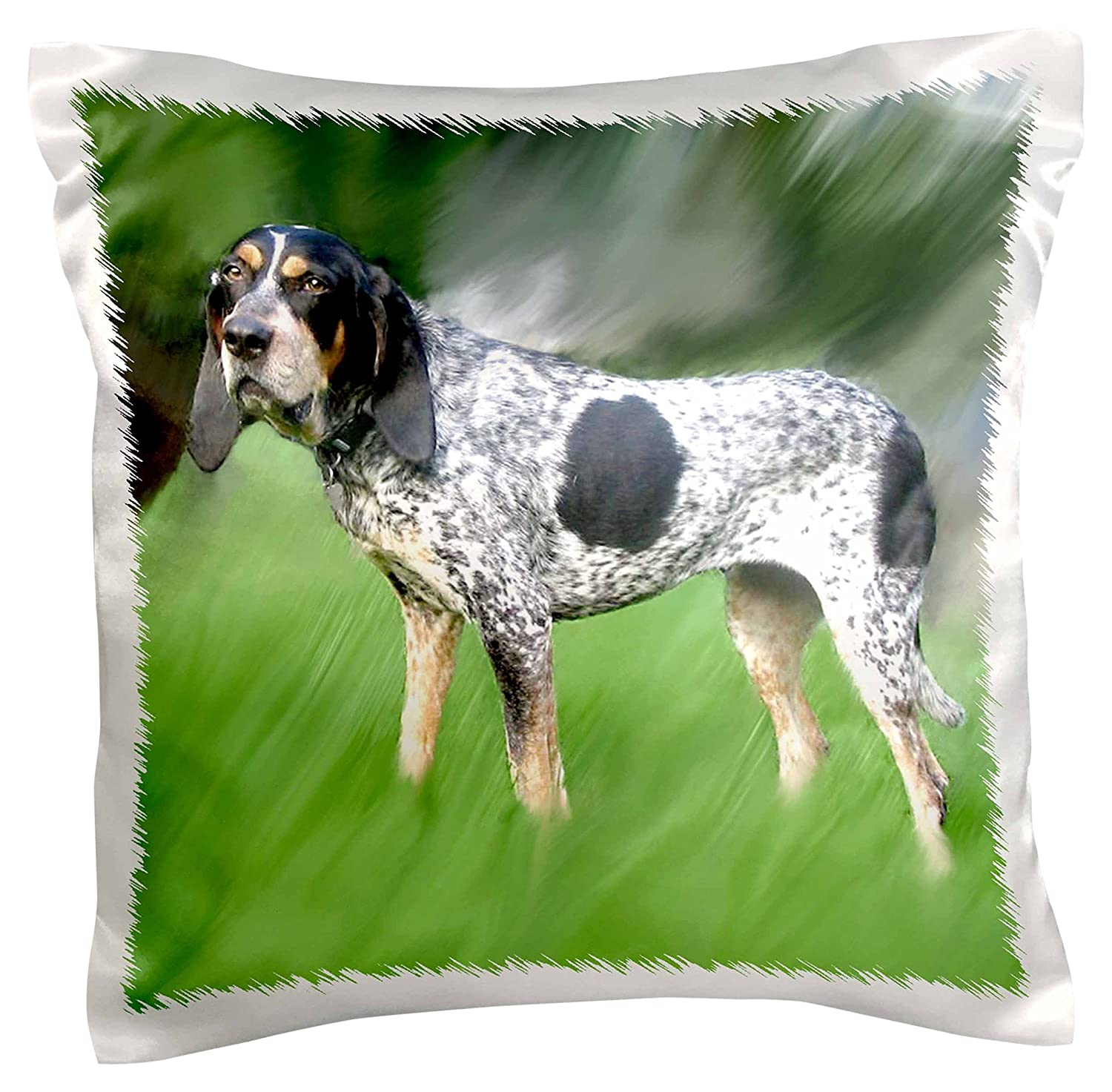 16 by 16 3dRose pc/_4417/_1 Blue Tick Coonhound-Pillow Case