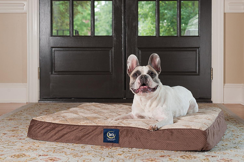 Serta ortopédica Acolchado sofá Cama para Mascotas: Amazon.es: Productos para mascotas