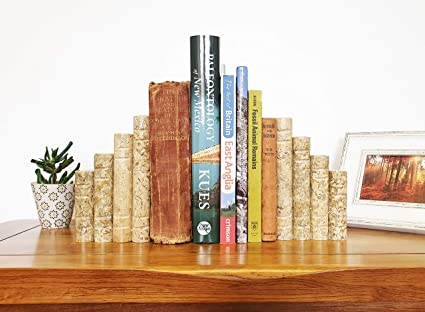 Presse-livres en marbre de lHimalaya Serre-livres Beige Fossilstone