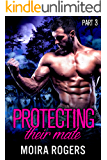 Protecting Their Mate: Part Three (The Last Pack)