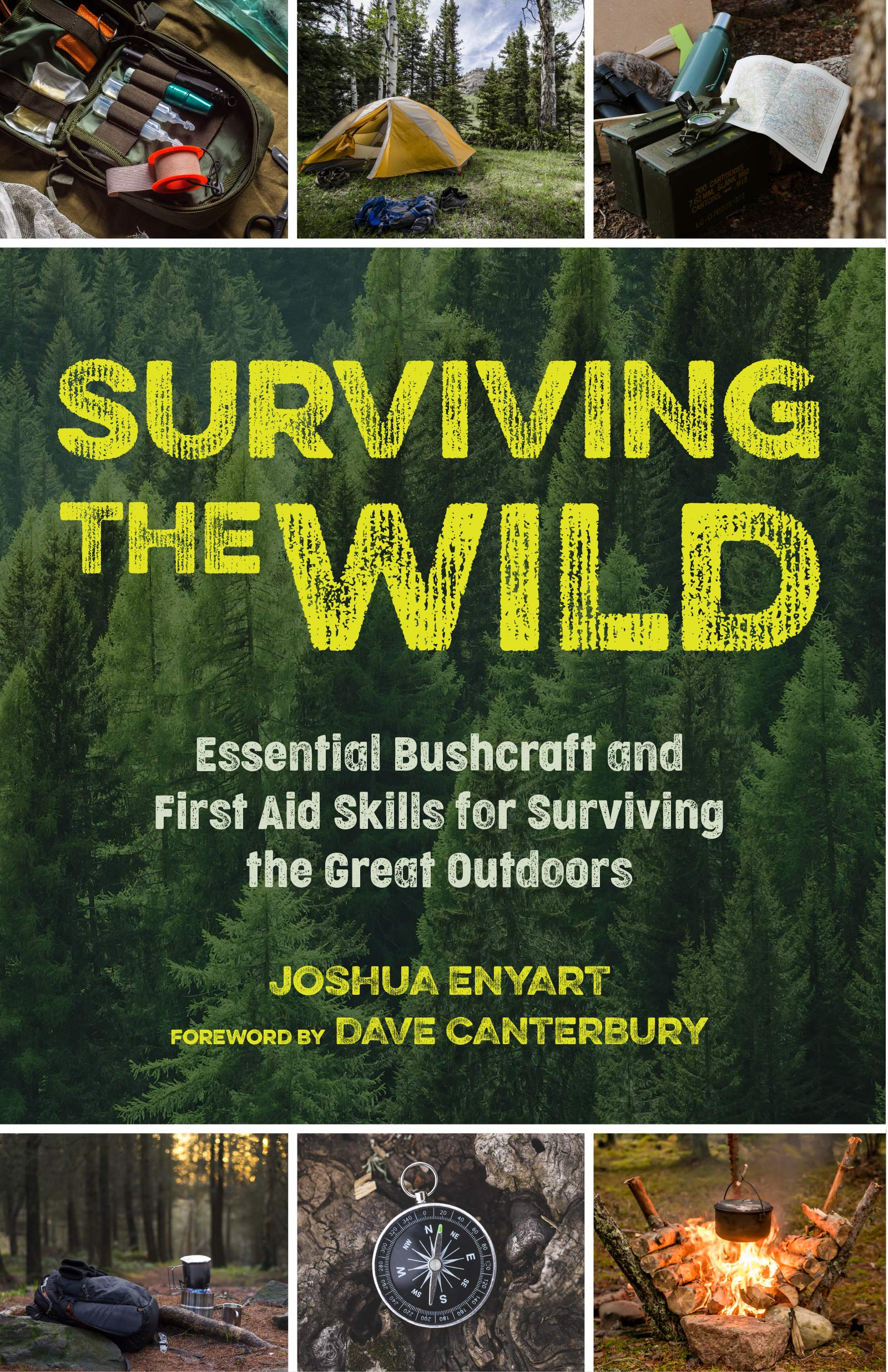 Surviving the Wild: Essential Bushcraft and First Aid Skills for Surviving the Great Outdoors (Wilderness Survival)