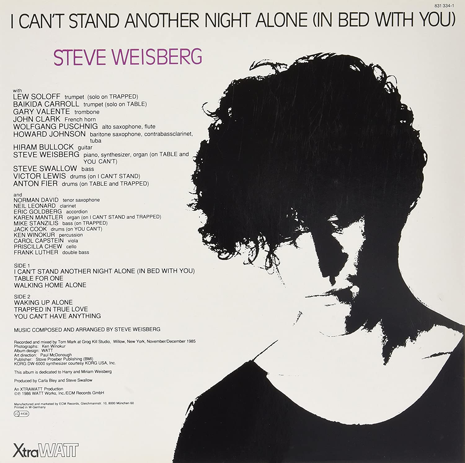 Steve Weisberg I Cant Stand Another Night Alone In Bed With You