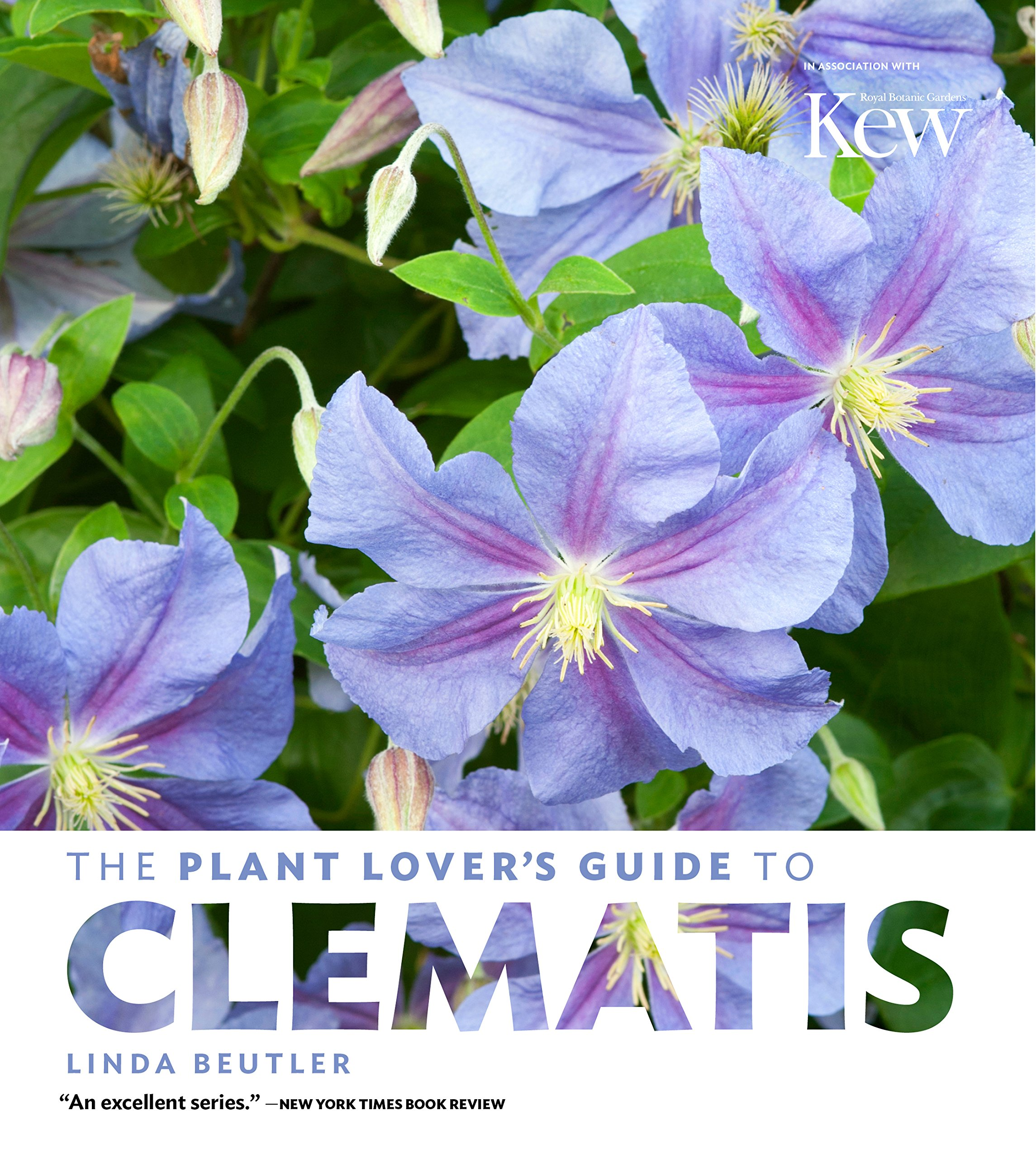 The Plant Lover's Guide to Clematis (The Plant Lover's Guides)