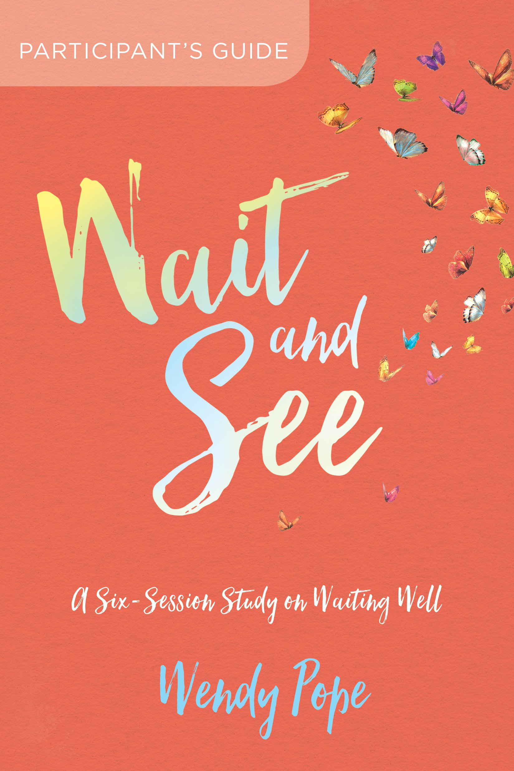 Wait and See Participant's Guide: A Six-Session Study on Waiting Well ebook