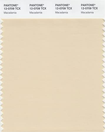 Amazon Com Pantone 12 0709 Tcx Smart Color Swatch Card Macadamia Home Improvement