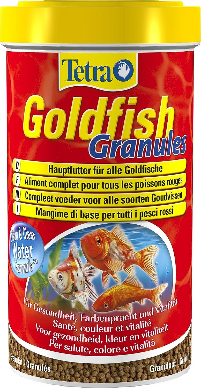 Il mio pesce dating