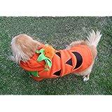 わん にゃん パンプキン コスチューム ♪ S M L サイズ 選択可能 !+ LED お散歩 安全 ライト 合計2点セット ♪ 犬 猫 かぼちゃ コスプレ 衣装 変身 ♪