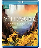 YELLOWSTONE:BATTLE FOR LIFE