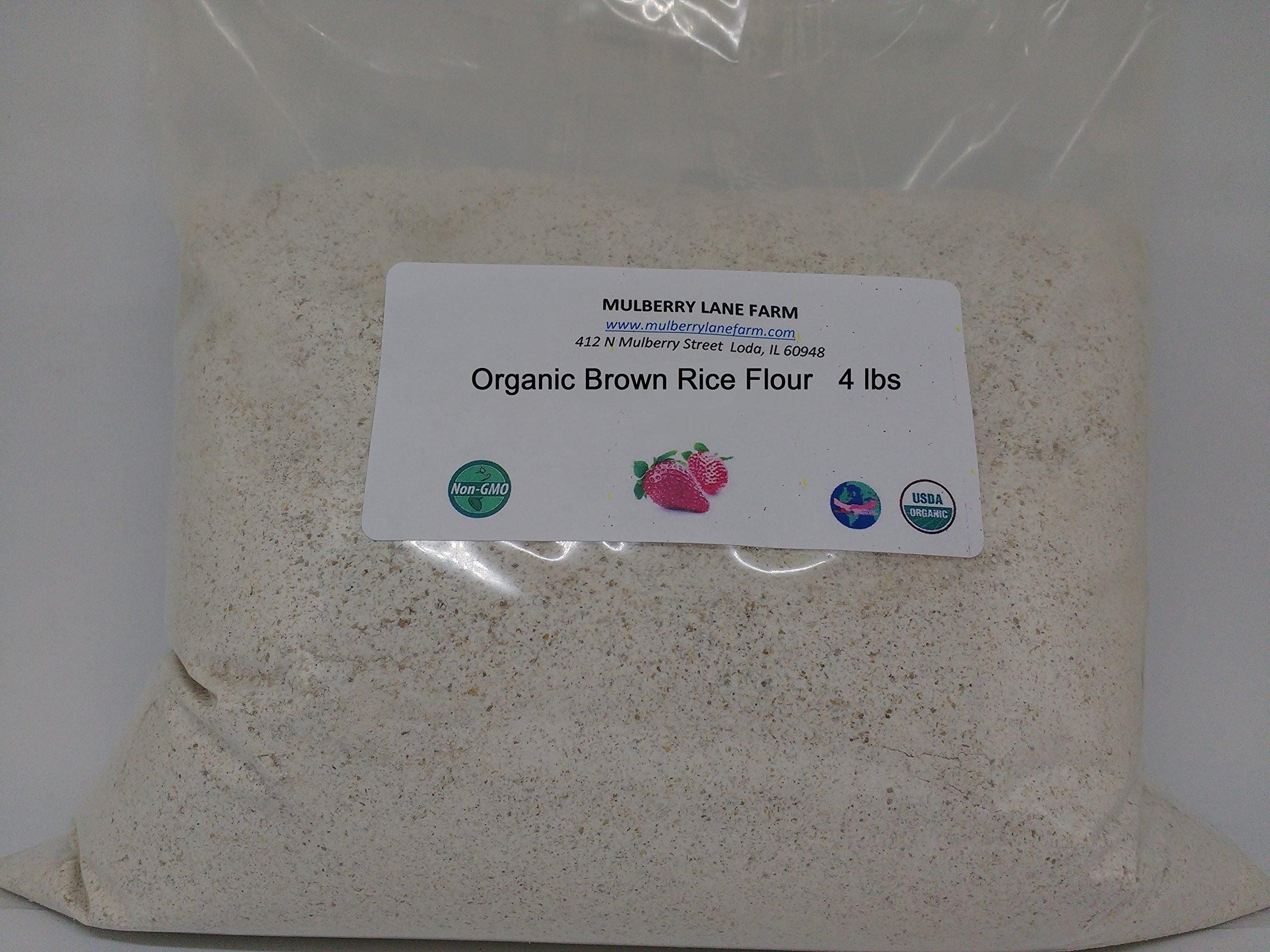 Brown Rice Flour 4 Pounds (four lbs) Organic USDA Certified, Non-GMO, BULK.