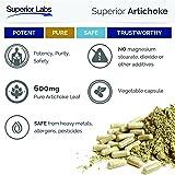 Superior Labs - Organic Artichoke Leaf Extract
