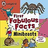 Minibeasts: Ladybird First Fabulous Facts