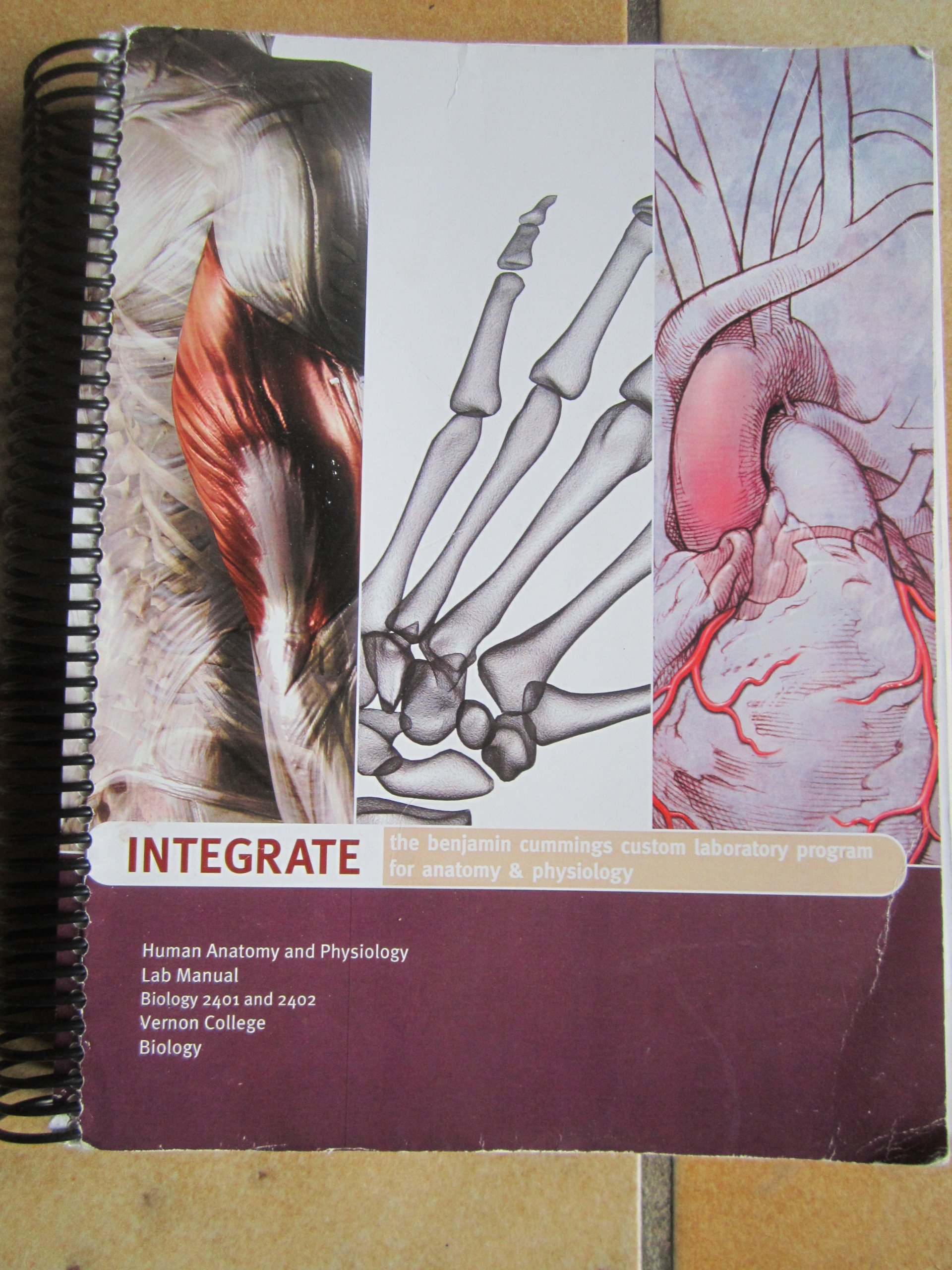 Human Anatomy and Physiology Lab Manual Vernon College - Biology ...