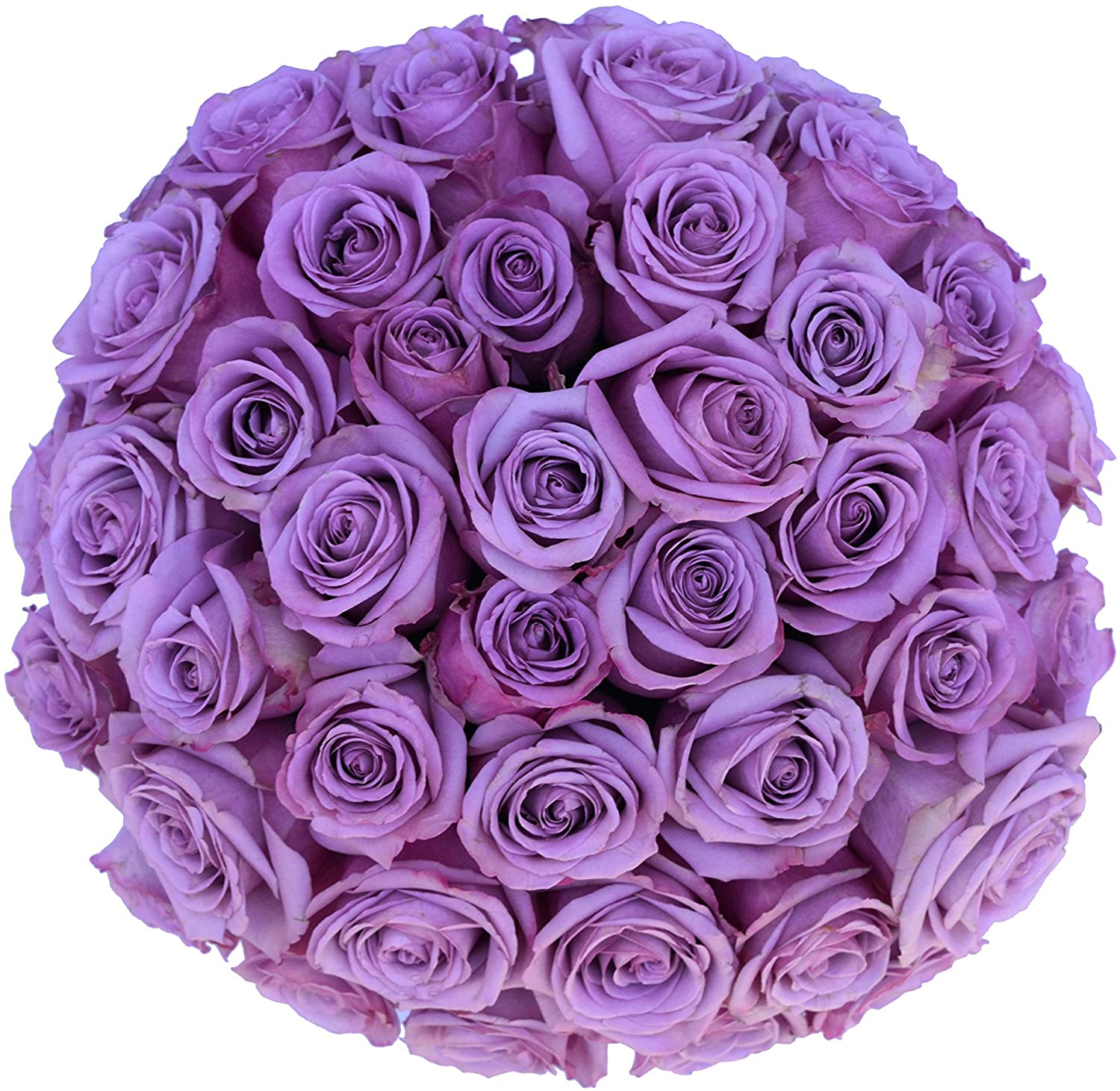 Fresh Purple Roses Bouquet by Withlovenregards