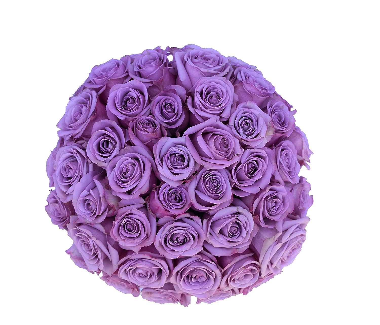 Amazon 2 Dozen Farm Fresh Purple Roses Bouquet By