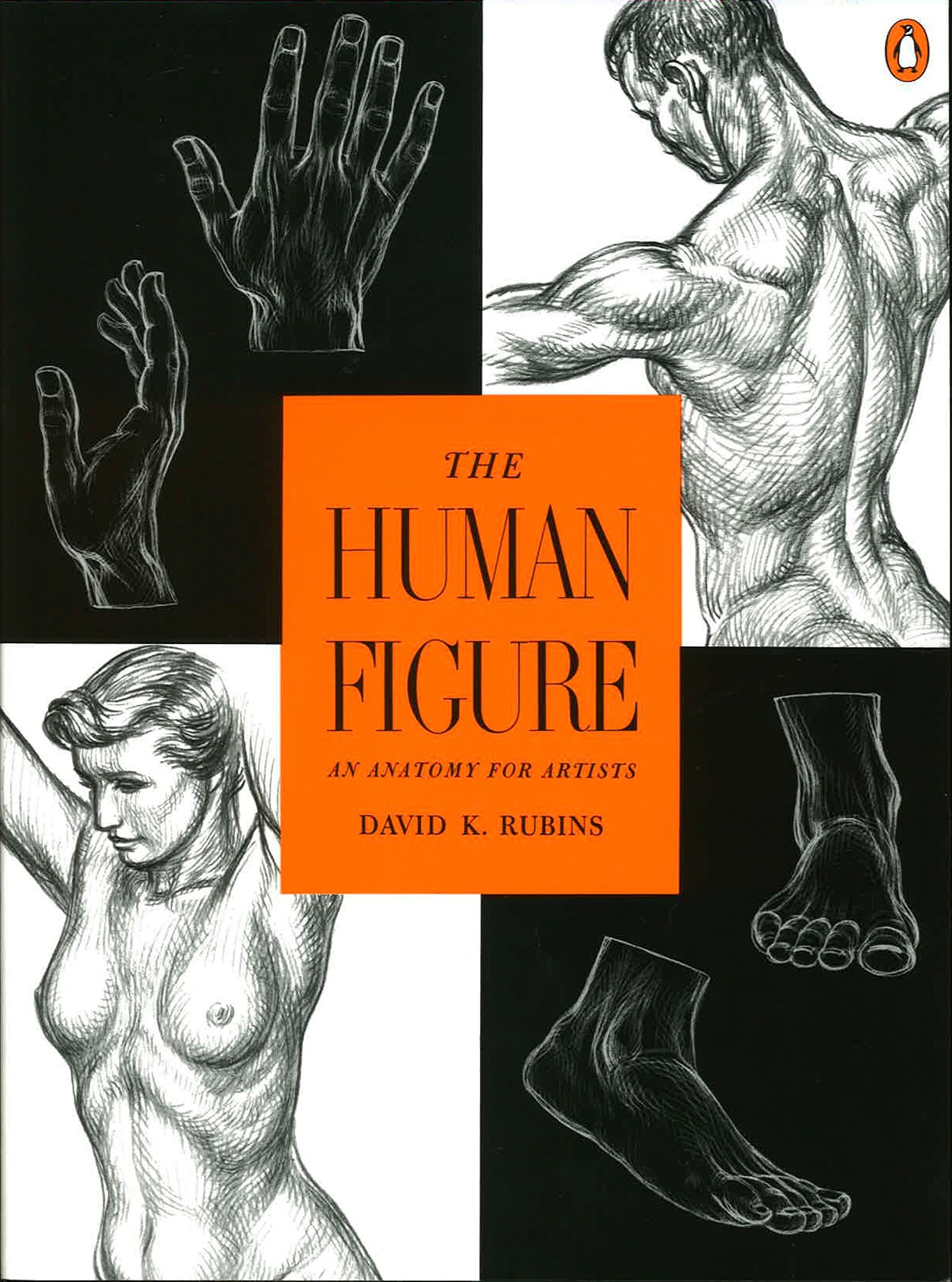 Amazon The Human Figure An Anatomy For Artists 9780140042436