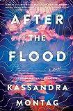 After the Flood: A Novel