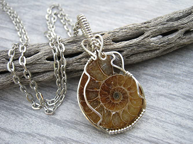 Amazon 925 sterling silver ammonite fossil necklace wire 925 sterling silver ammonite fossil necklace wire wrapped fossilized squid pendant handmade aloadofball Images