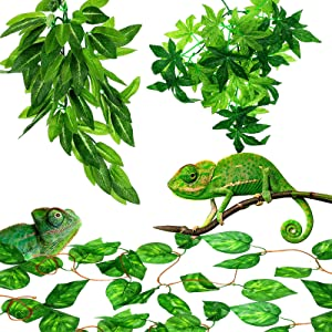 3 Pieces 12 Inch Reptile Plants Set Artificial Hanging Silk Terrarium Plant Artificial Money Plant Hanging Vines with Suction Cups for Lizards Bearded Dragons Snake Geckos Hermit Crab Tank Decor