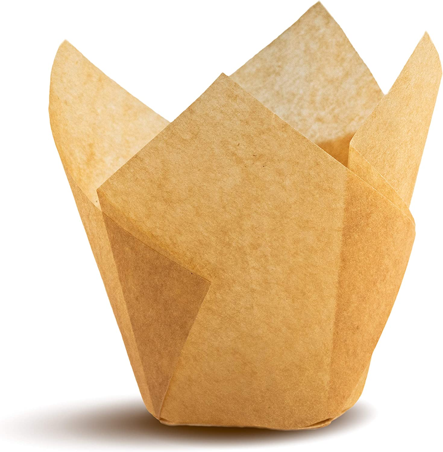 Tulip Cupcake Liners, Natural Baking Cups for Standard Size Cupcakes and Muffins Liners (300, Natural)