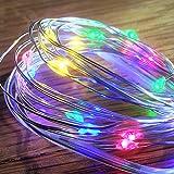 Festive Productions 20L Multicolour LED Naked Silver Wire Lights, Multi-Colour