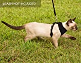 HOUNDNINE Escape Proof Cat Harness | Best for