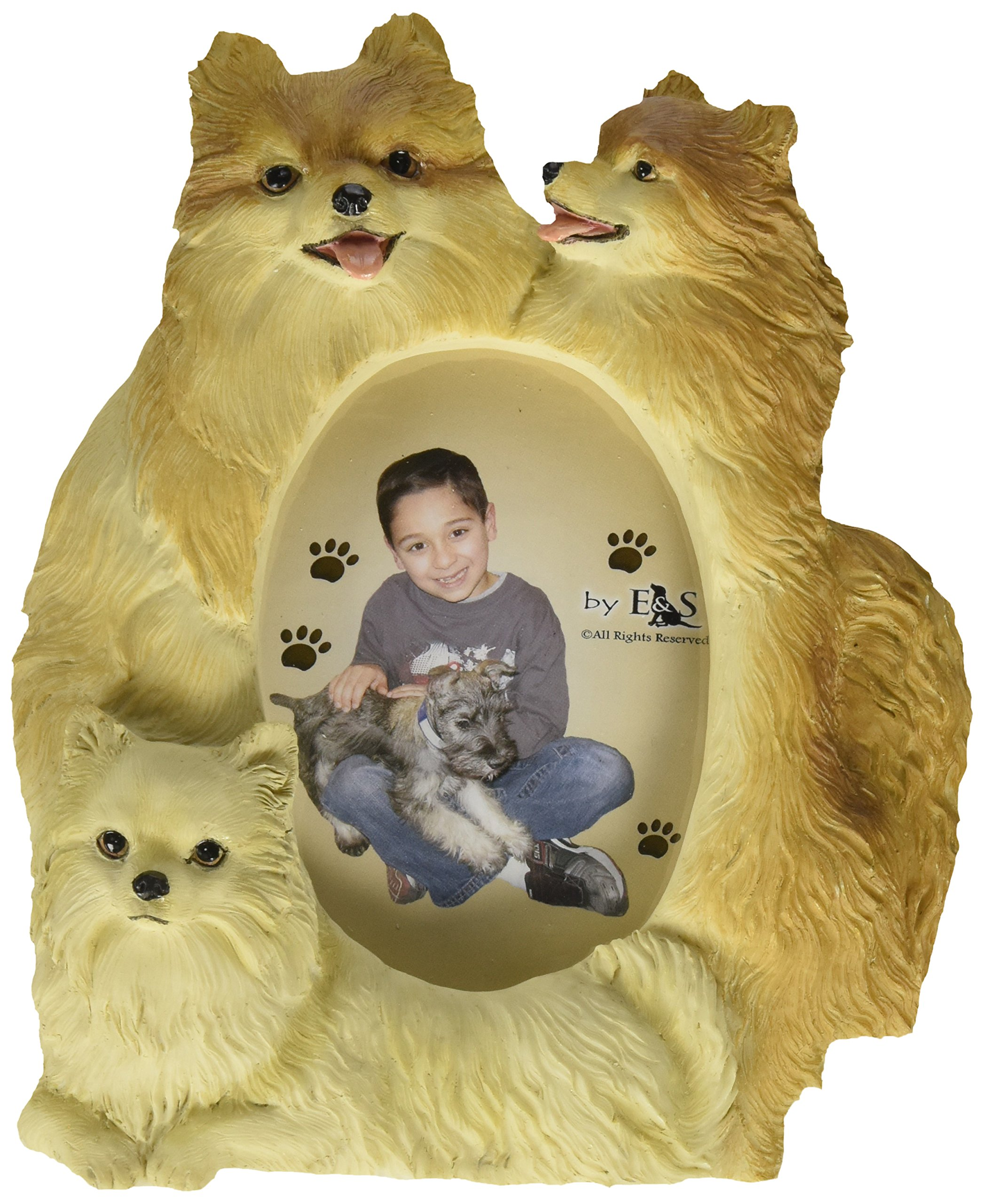 Pomeranian Gift Picture Frame Holds Your Favorite 3x5 Inch Photo, A Hand Painted Realistic Looking Pomeranian  Family Surrounding Your Photo. This Beautifully Crafted Frame is A Unique Accent to Any Home or Office. The Pomeranian  Picture Frame Is The Per by E&S Pets (Image #1)