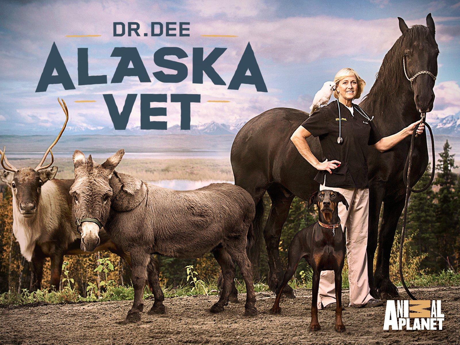 Amazon.com: Dr. Dee Alaska Vet Season 1: Amazon Digital Services LLC