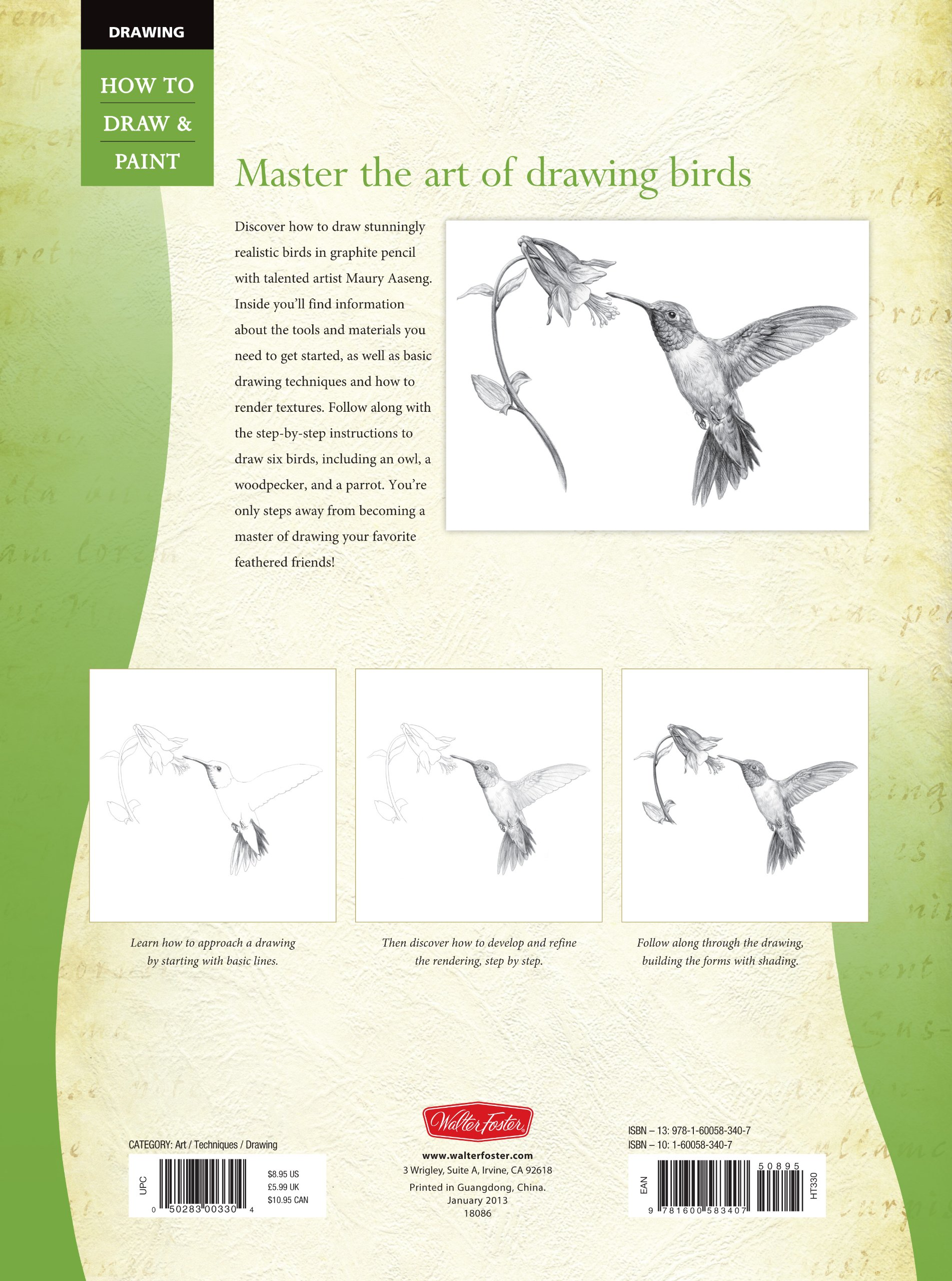 how to draw love birds step by step