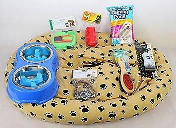 RS Pet Boutique cachorro/Perro Starter Kit, cama para perro, Twin cuenco, cuello, líder, 2 X comederos de lenta, juguetes, bolsas de basura, bolsa de regalo: Amazon.es: Productos para mascotas
