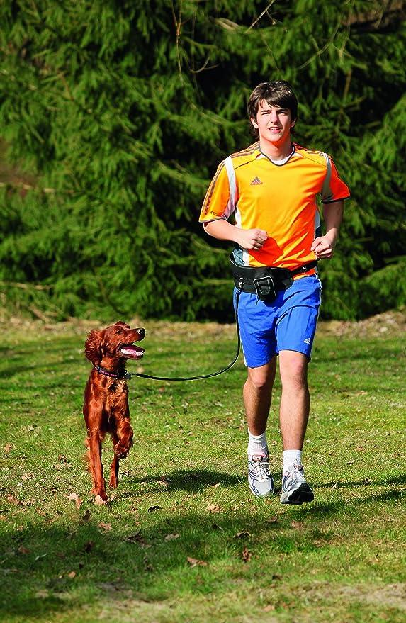 Karlie 65414 Doggy Jogger Arnés para Correr con tu Perro, 25 mm x ...