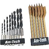 Am-Tech - Set di punte per legno dal gambo esagonale, 14 pezzi