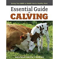 Essential Guide to Calving: Giving Your Beef or Dairy Herd a Healthy Start