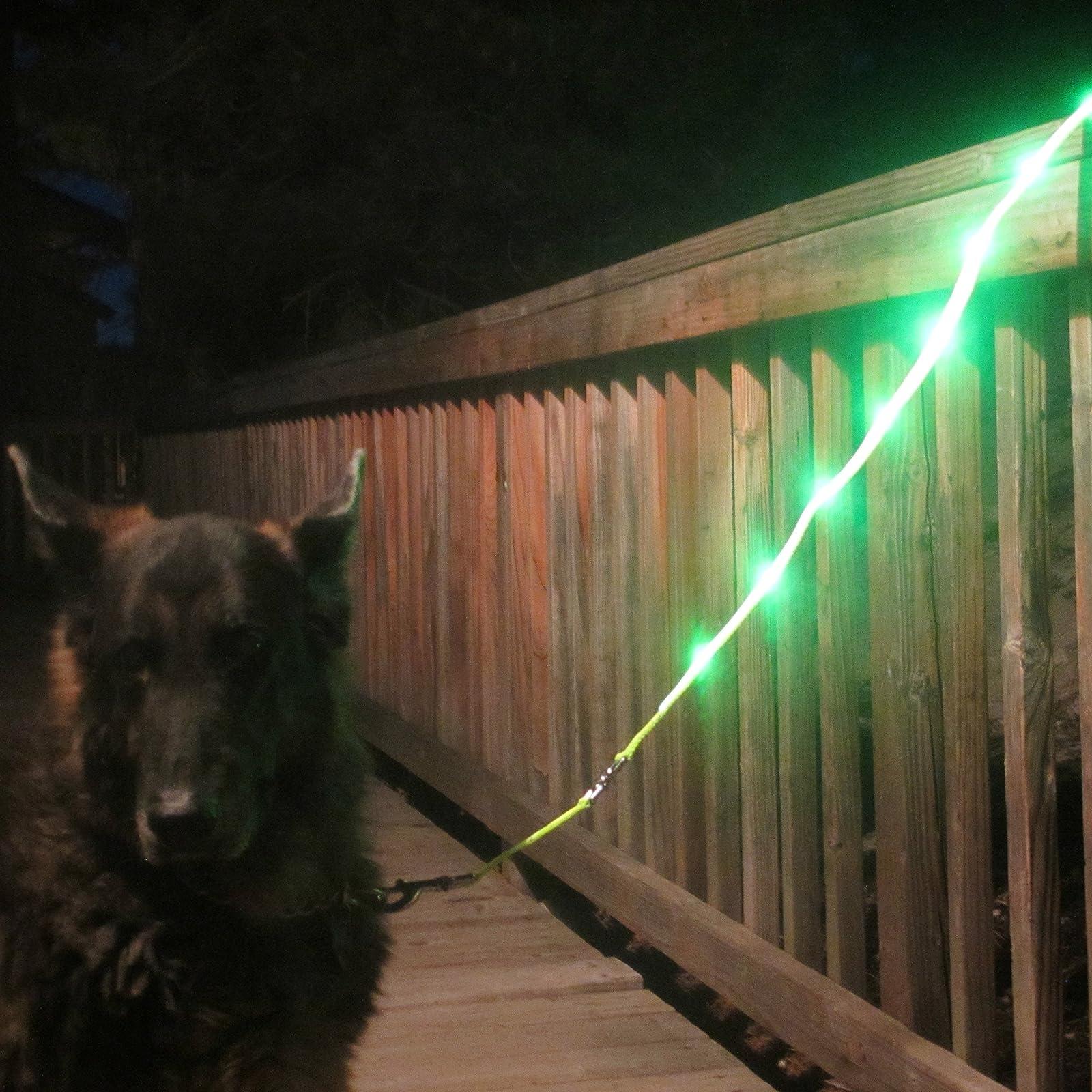 Blazin' Safety LED Dog Leash - USB Rechargeable - 1