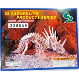 IQ Assembling Products Series STyracosaurus (Wooden 3-D Puzzle)