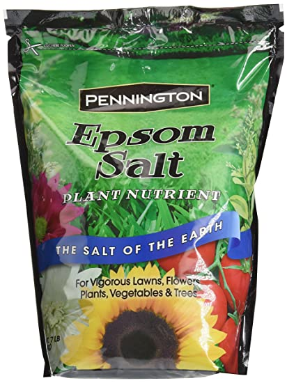 Pennington Epsom Salt, 7 Pound