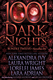 1001 Dark Nights: Bundle Twelve