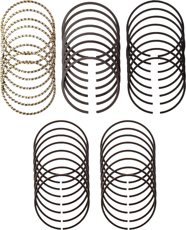 Hastings 2C5623S030 Single Cylinder Piston Ring Set