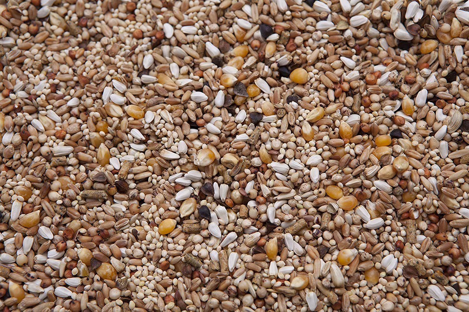 Des Moines Pigeon Feed Dove Mix 20 lbs